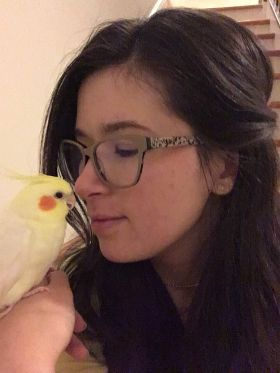 Curry the cockatiel
